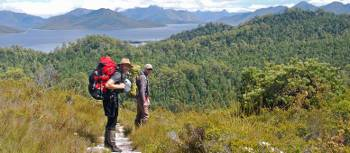 Trekking toward Lake Pedder | Chris Buykx