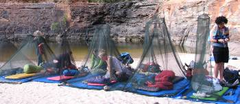 Mozzie nets when camping in the Kimberley in the dry season | Di Westaway